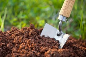 انواع کود کشاورزی