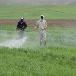 صادرات عمده انواع سم کشاورزی