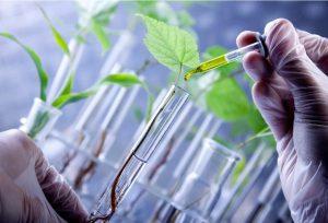 کود کشاورزی نانو
