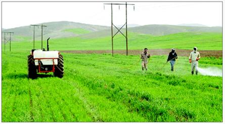 سم کشاورزی در تهران