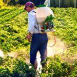 سم برای کشاورزی