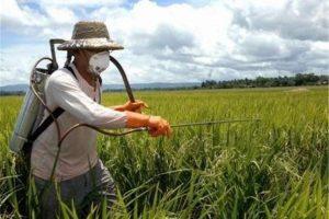 فروش کود کشاورزی اوره