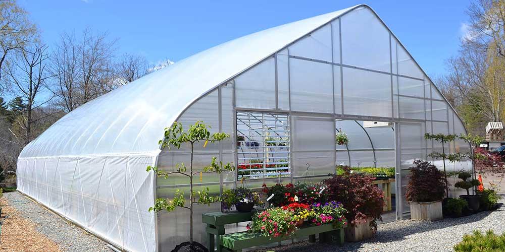 سموم کشاورزی گلخانه