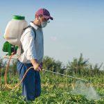 قیمت کود سفید کشاورزی